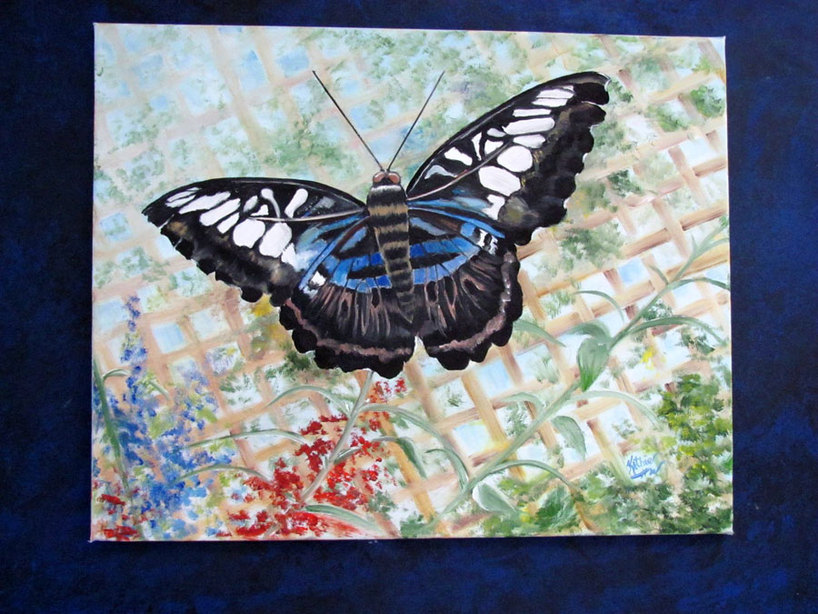 Beauty in Black - 24x30 - Oil painting of a black butterfly by Kathie Widing - www.kathiewiding.com